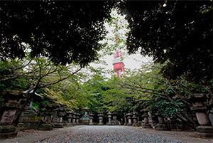 徳川将軍家墓所 内部